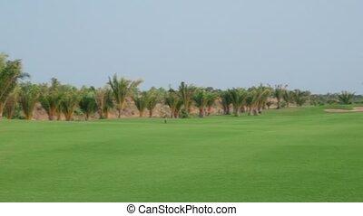 femme heureuse, terrain de golf, sports
