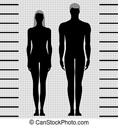 femme, mâle, gabarits, corps