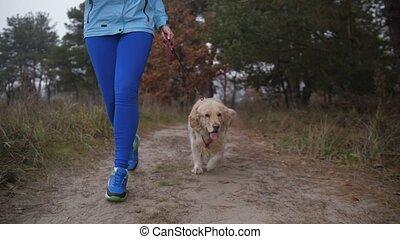 femme, nature, coureur, chien, matin, secouer