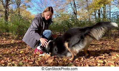 femme, parc, chien