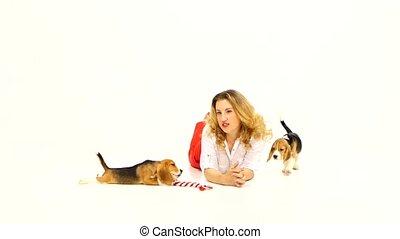 femme, poser, beagle, chiot, studio