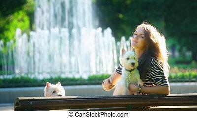 femme, selfie, deux, banc, park., statique, joli, blanc, terrier, chiens