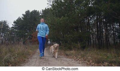 femme, sportif, crise, chien, automne, jogging, forêt
