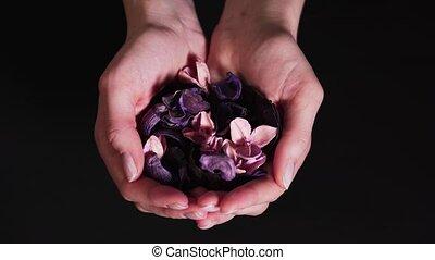 femmes, fleurs, arrière-plan., mains, aromathérapie, sec, naturel, exposition, noir, bien-être, calme, palms., concept, ingrédients