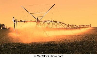 ferme, irrigation