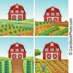 ferme, paysage rural, grange