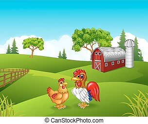 ferme, poulet, dessin animé, coq