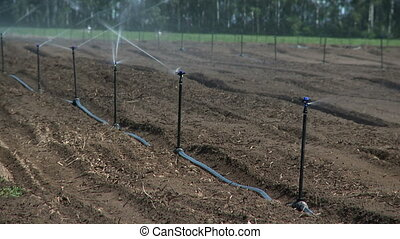 ferme, système irrigation