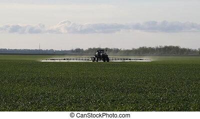 fertilisant, blé, confection, roues, élevé, tracteur, jeune