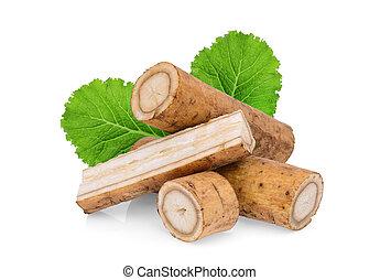 feuille, bardane, isolé, kobo, arrière-plan vert, blanc, ou, racines