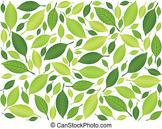 feuille, fond, vert