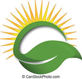 feuille, soleil, logo, vert, rayons
