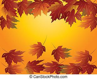 feuilles, érable, illustration, automne