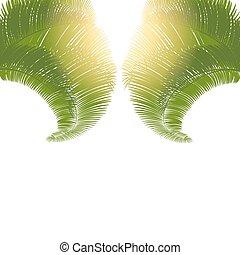 feuilles, arbres, arrière-plan., paume, illustration, blanc, levers de soleil
