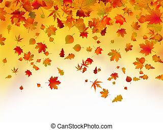 feuilles automne, baissé, fond