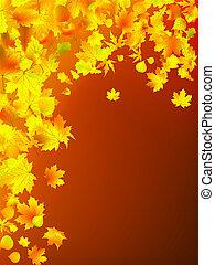 feuilles, automne, fond