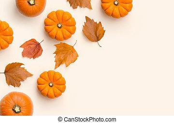 feuilles automne, potirons, composition, automne