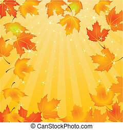 feuilles, fond, automne, tomber