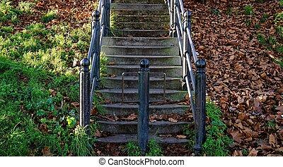 feuilles, grille, rustique, fer, automne, étapes