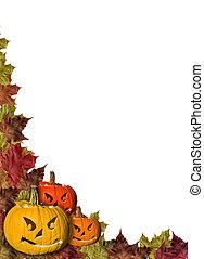 feuilles, halloween, fond, potirons, automne, cadre, blanc