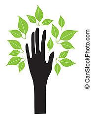 feuilles, main