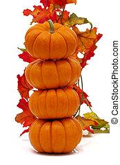 feuilles, potirons, pile, automne
