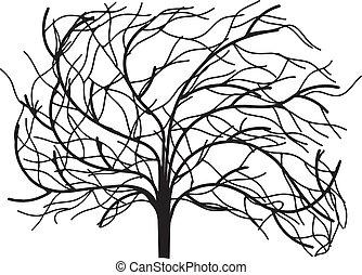 feuilles, sans, arbre