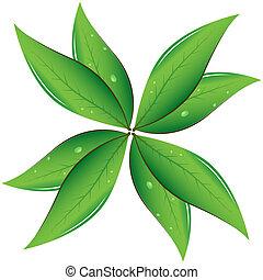 feuilles thé, vecteur, illustration