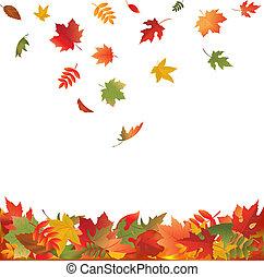feuilles, tomber, automne