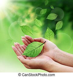 feuilles, ton, mondiale, soin, main