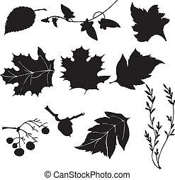 feuilles, vecteur, silhouette