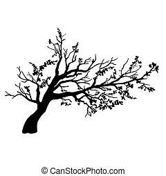 feuilles, voler, arbre, vent
