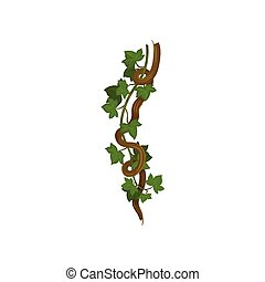 ficelles, autour de, vigne, illustration, arrière-plan., vecteur, branch., blanc