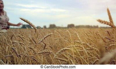 fille femme, coucher soleil, toucher, courant, maïs, slowmotion., jeune, field., 1920x1080, sourires, oreilles, hd, champ, blé, main