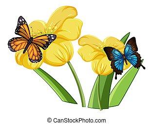 fin, fleurs, papillon, haut