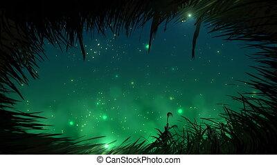 fireflies, herbe, boucle, nuit