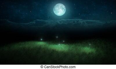 fireflies, nuit, boucle, lune