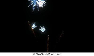 fireworks., hd, cg.
