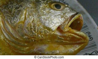 fish, croaker, délicieux