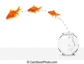 fishbowl, s'échapper, trois, goldfishes