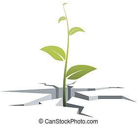 fissures, germe, illustration, vecteur, dehors, grows, terrestre
