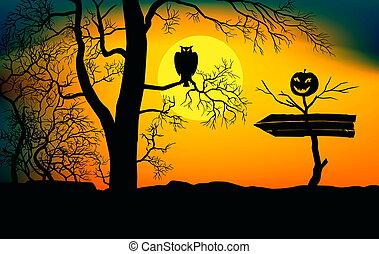flèche, arrière-plan., clair lune, halloween., vacances