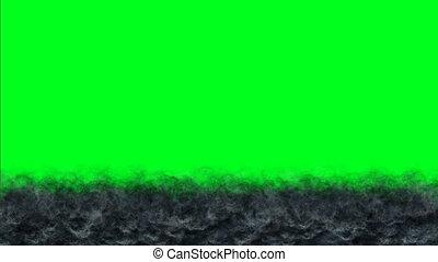 flammes, brûler, écran, brulure, chroma, vert sombre, clã©, mouvement