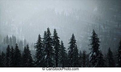 flanc montagne, neige, arbres, couvert, hiver, cône