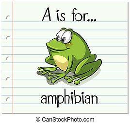 flashcard, amphibie, lettre