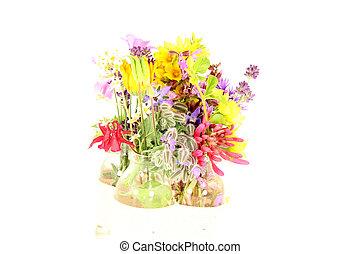 fleur, été, puissance, temps