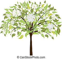 fleur, arbre