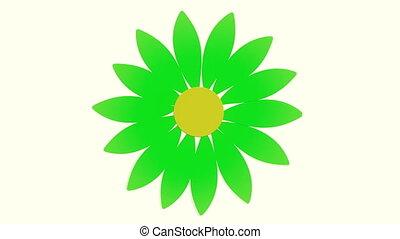 fleur, blanc vert, tourner, pétales