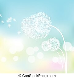 fleur blanche, nature.