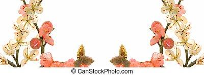 fleur, cerise, jade, 2